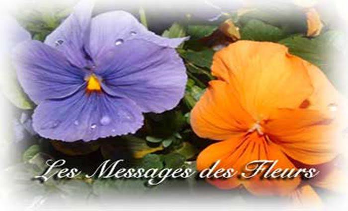Le tirage de l'oracle des fleurs