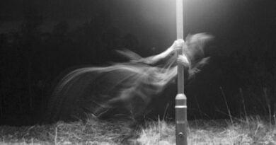 Les Fantômes
